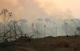 Número de focos de queimadas cresce quase 40% em Rondônia, aponta Inpe