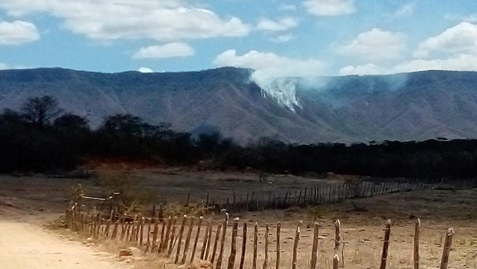 Caçadores são suspeitos de causarem incêndio florestal no Parque Nacional de Ubajara, no interior do Ceará