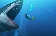 Maior tubarão já existente tinha 18 metros e 45 toneladas