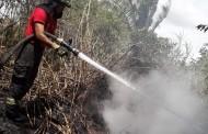 Área de vegetação pega fogo no bairro Santa Amélia, em Maceió